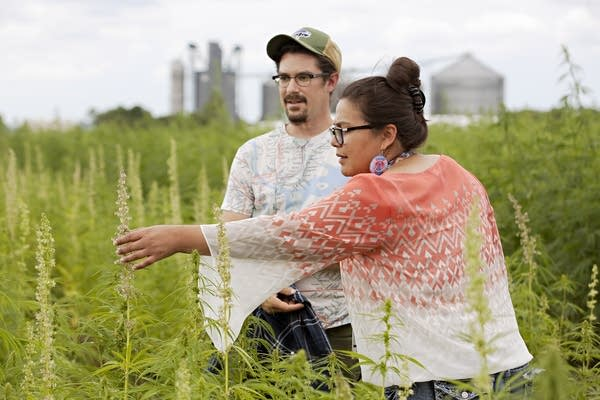 Tara Mason and Zachary Paige check out progress at a research hemp plot.
