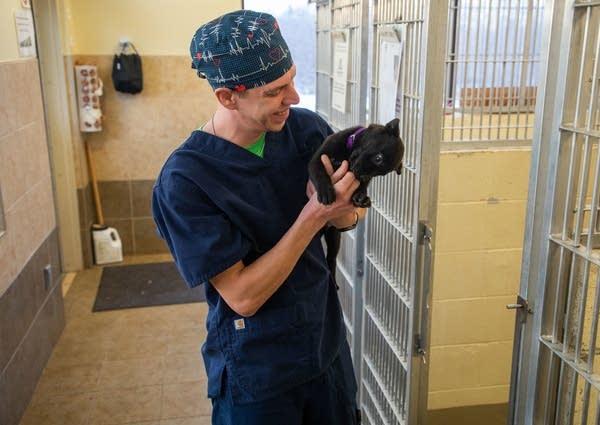 Certified veterinary technician Chad Goad handles 8-week-old Zeppelin.