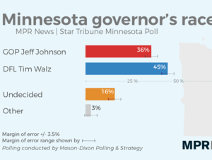 A sizable percentage remain undecided for Minnesota Governor