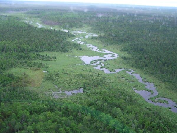 Big Bog