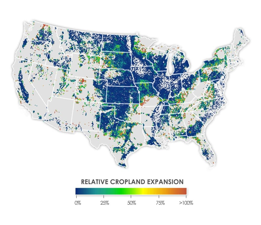 The amount of new cropland expansion