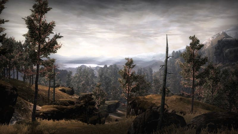 Ettenmoor Landscape from LoTR: War in the North