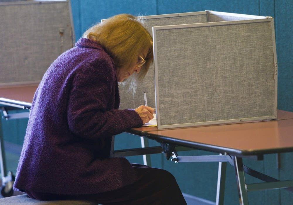 Duluth voter