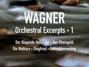 Richard Wagner - Siegfried: Forest Murmurs