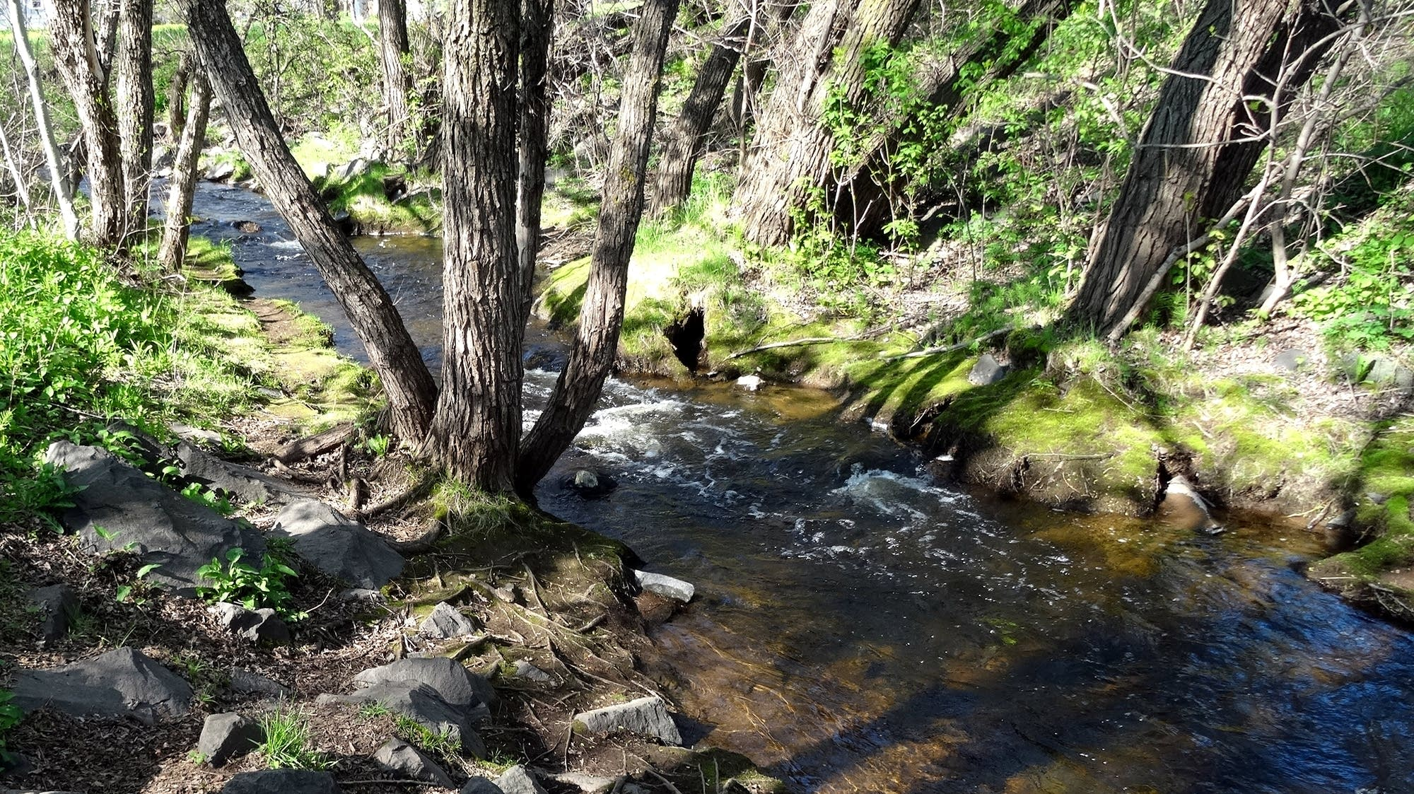 Duluth's Keene Creek