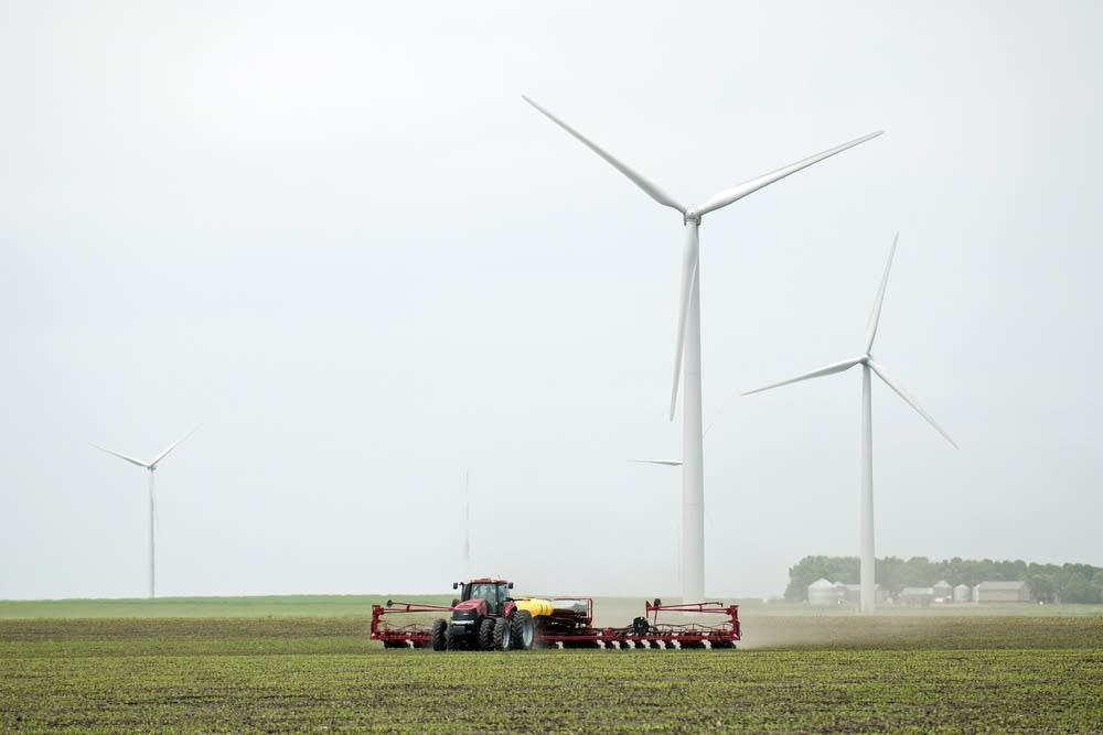 Farming amid the wind turbines