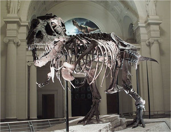 Sue the T. rex