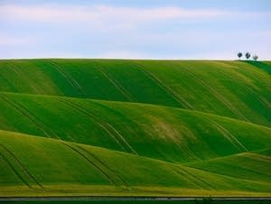 Green hills roll under a blue sky.