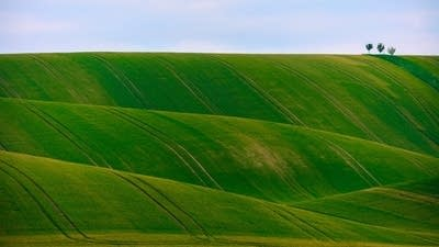 9baa68 20181018 green hills roll like carpet under a blue sky