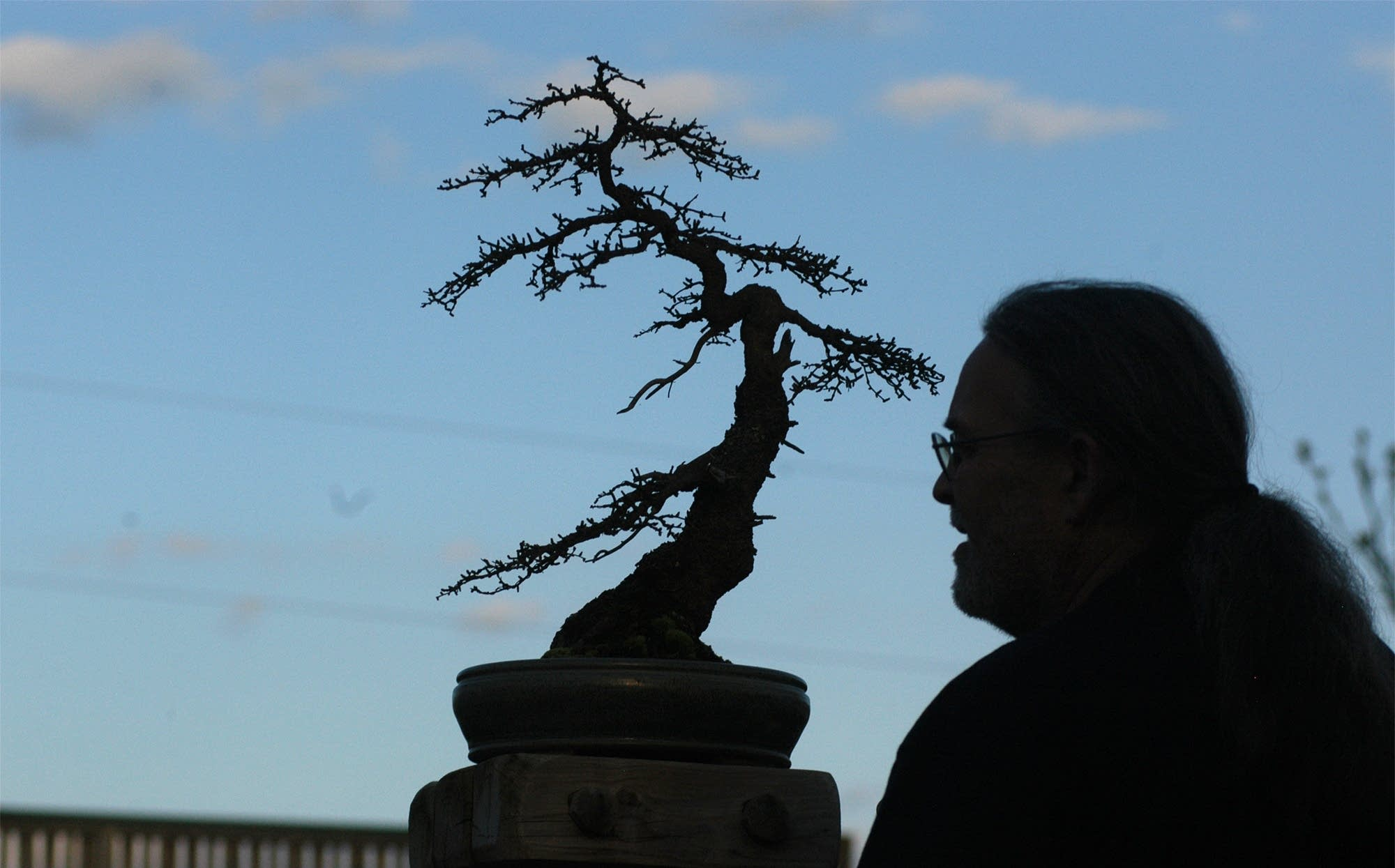 David Crust has a passion for bonsai created from trees of the region.