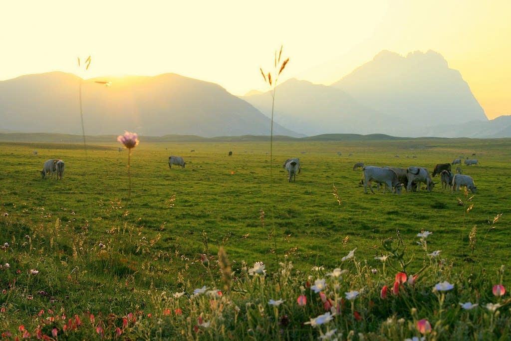 Abruzzo is a pristine region of Italy 'hidden in plain sight'