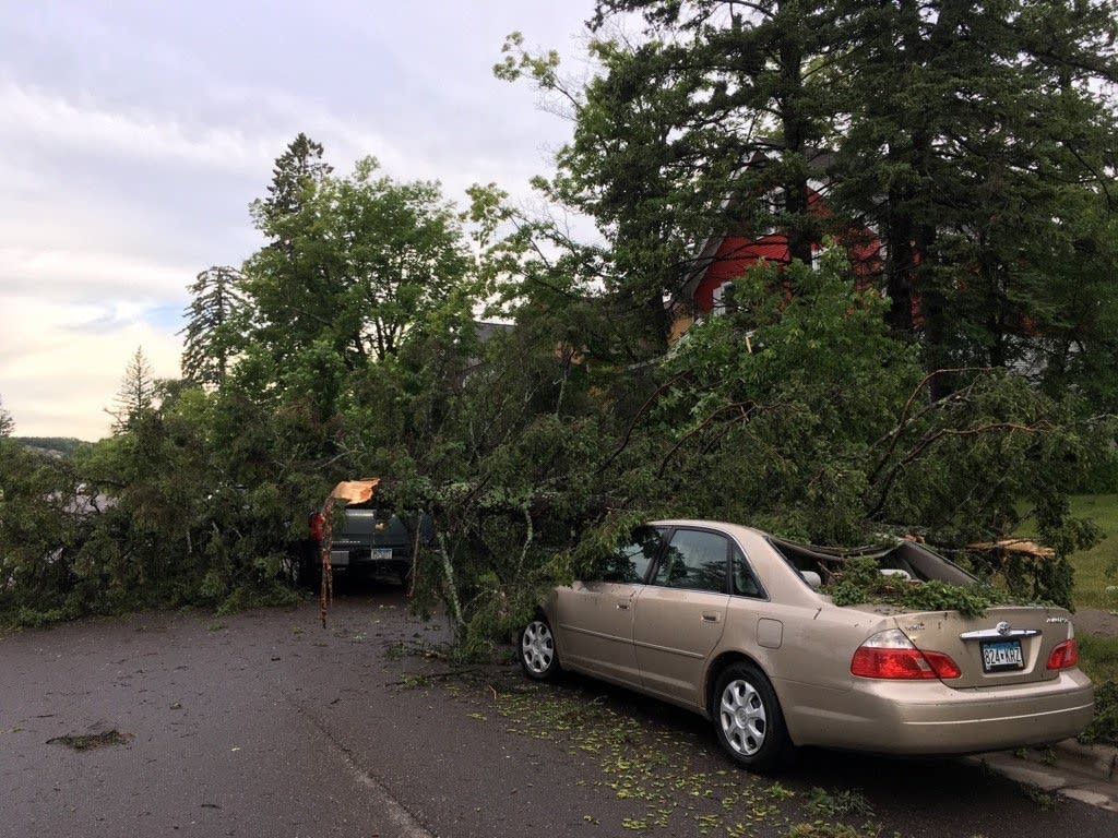 Tree damage in Duluth