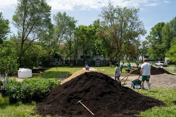 Piles of black dirt are spread on a field.