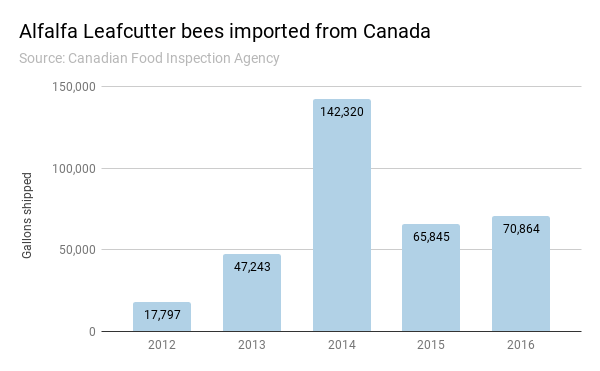 Alfalfa leafcutter bees imported from Canada