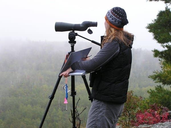 Anna Peterson