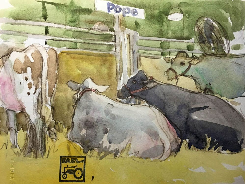 Cows at the Minnesota State Fair