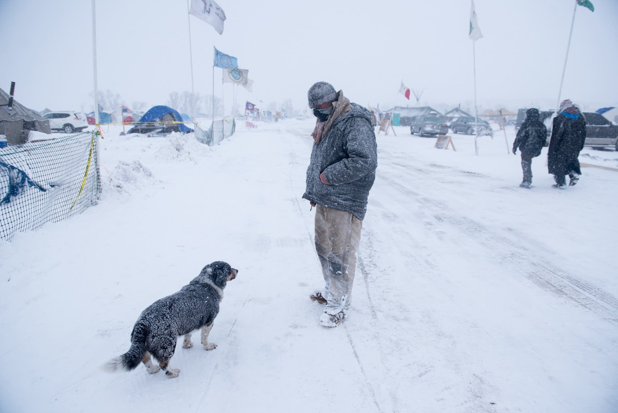 A man and his dog walk the Oceti Sakowin Camp.