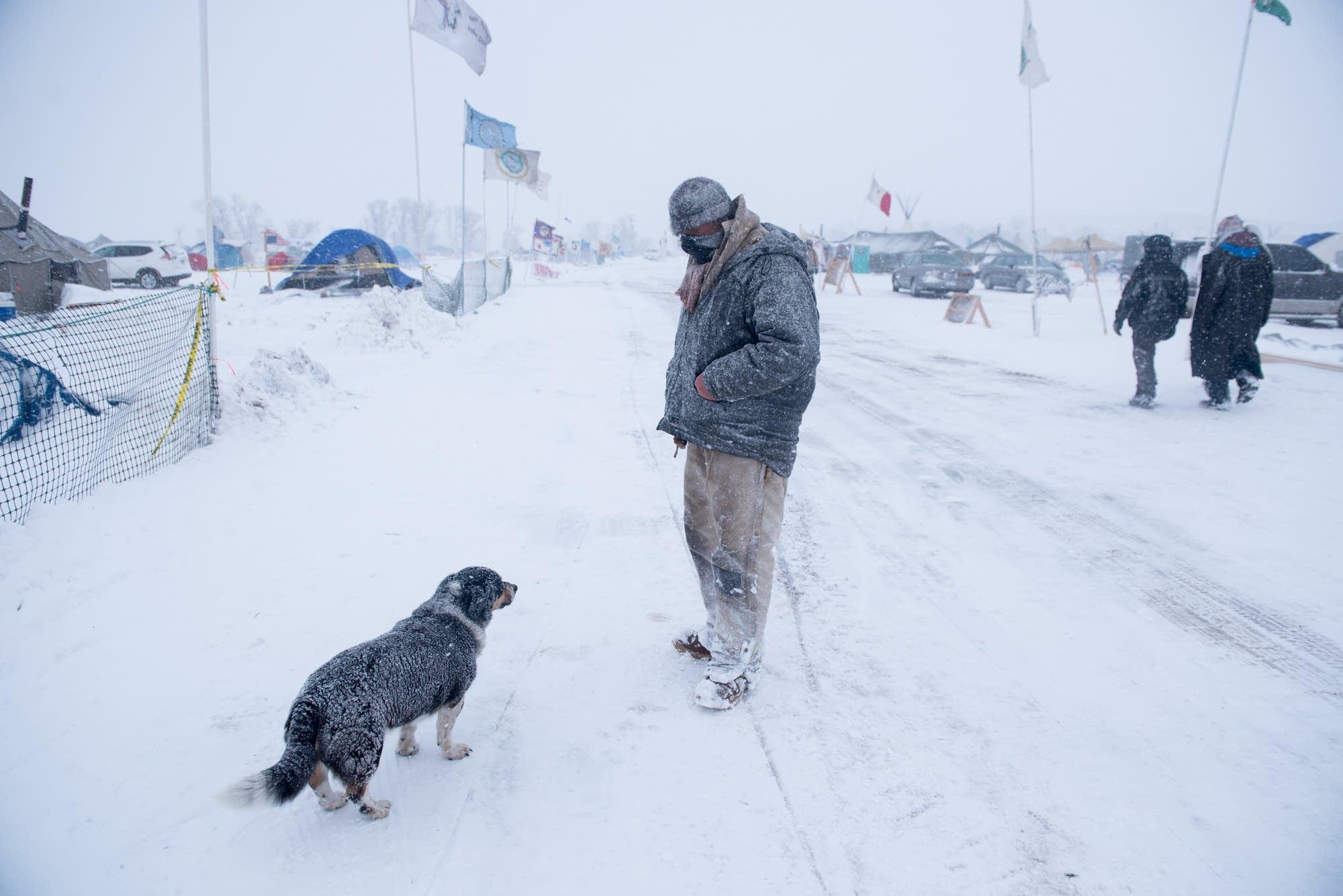 A man and his dog walk the  Oceti  Sakowin Camp.