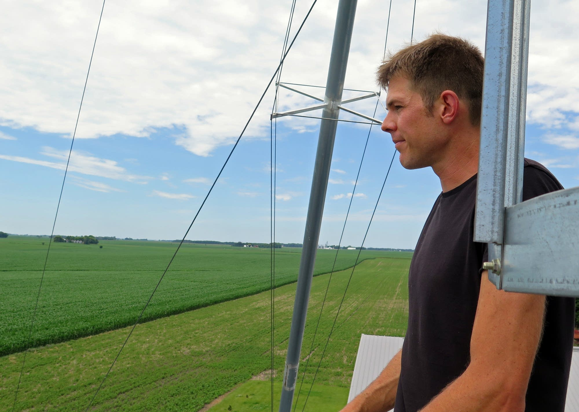 Scott Haase looks out at a field where he planted cover crops.