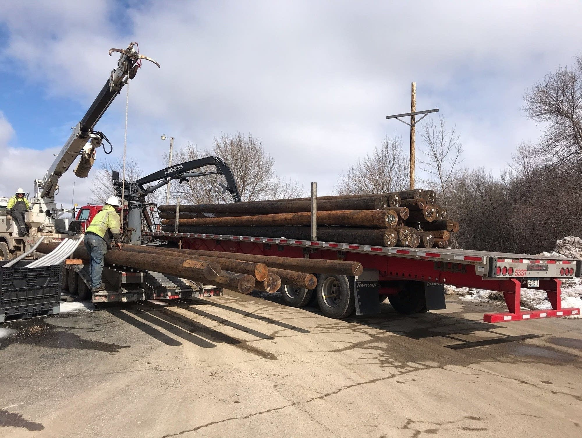 Replacement utility poles are seen at Freeborn-Mower Cooperative