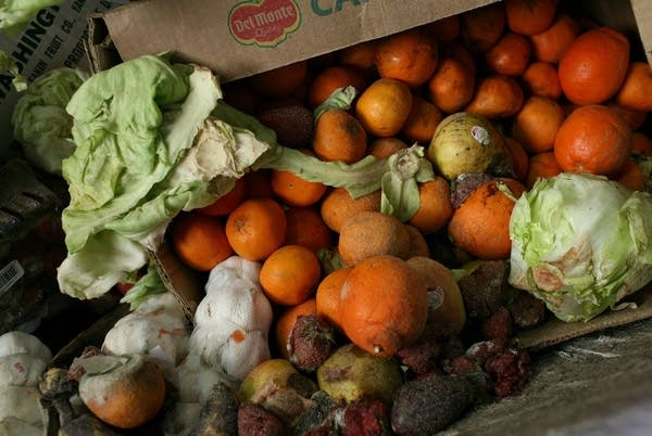 8 tips to reduce food waste at home this holiday season