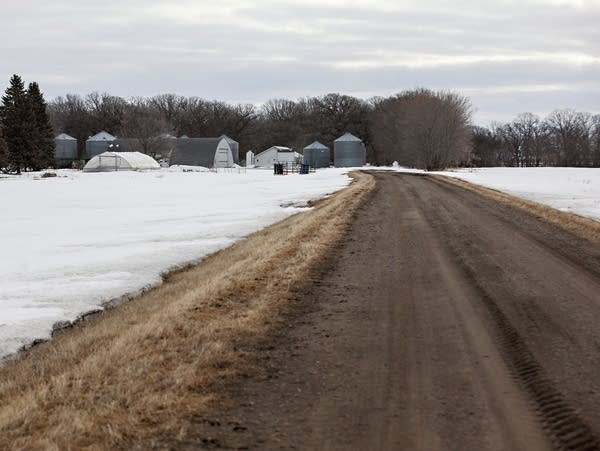 A driveway leads to the home of Noreen and Lee Thomas in Kragnes Township
