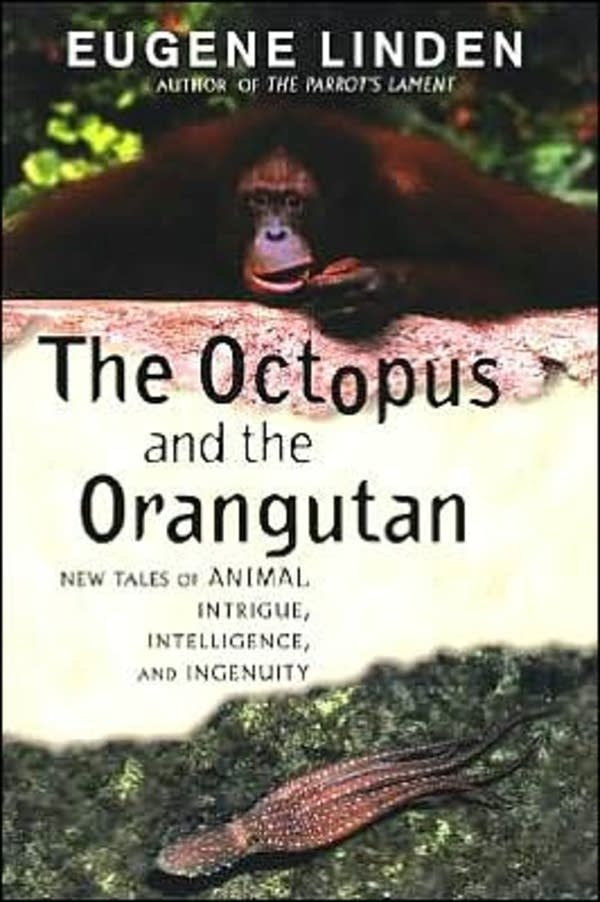 'The Octopus and the Orangutan' by Eugene Linden
