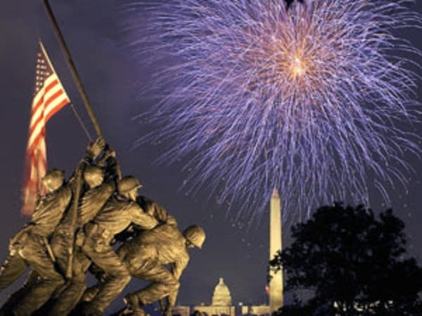 Fireworks light up the sky in Arlington, Virginia.
