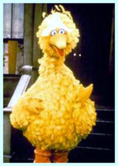 Fb2a2b 20121003 big bird