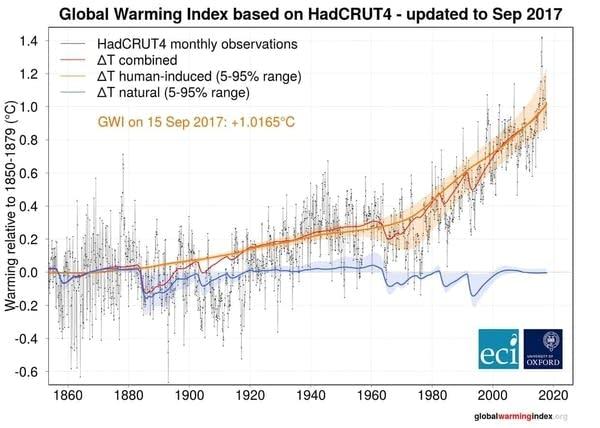 Human warming link