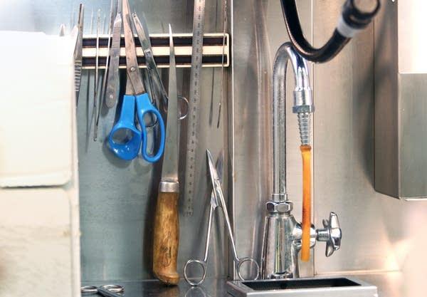 Tissue preparation tools