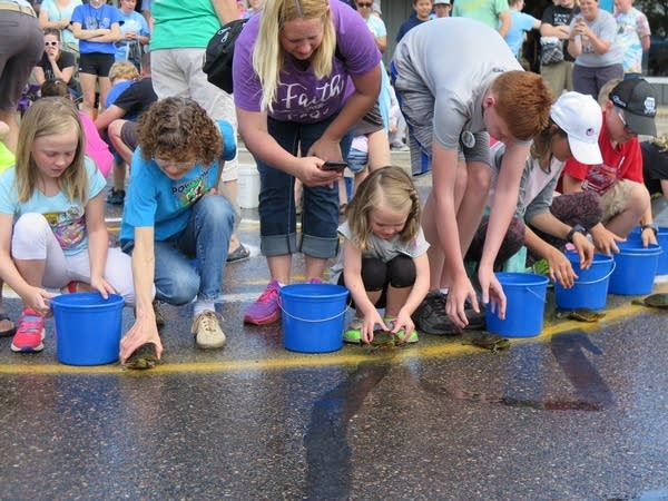 Shyla Ahlers, 9, and Kyra Ahlers, 5, get ready to race their turtles.