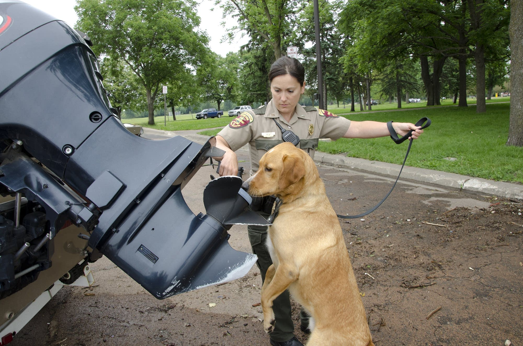 Brady and his handler, Conservation Officer Julie Siemsa