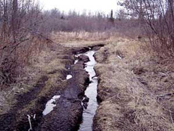 Trail erosion