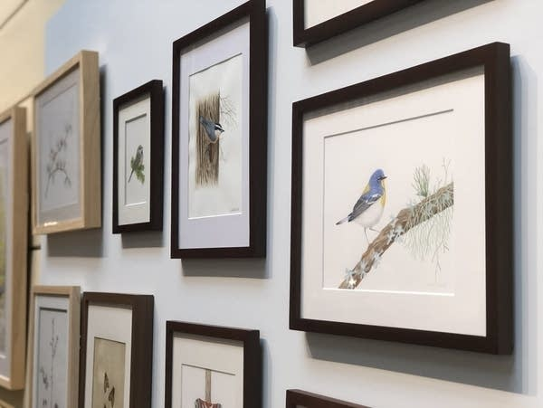Botanical art displayed at the Hill House depict trees and wildlife.