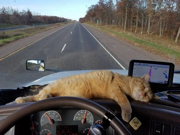 Percy on the road