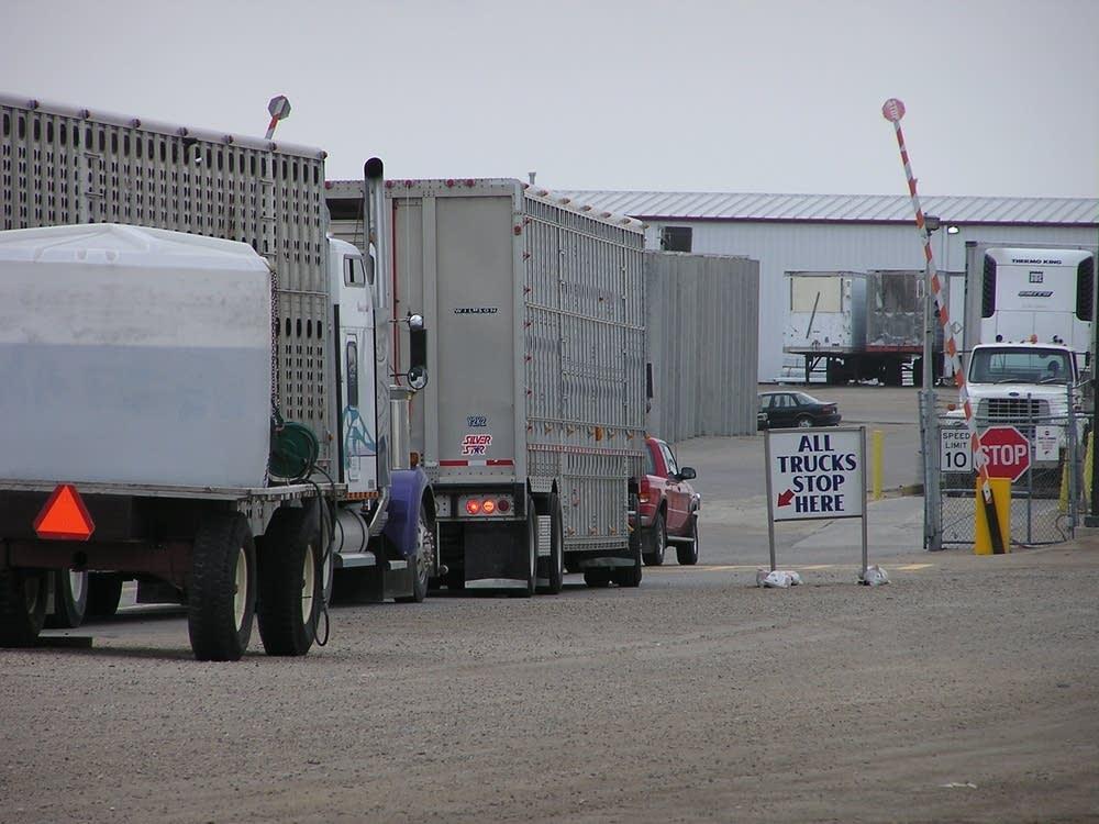 Livestock trucks