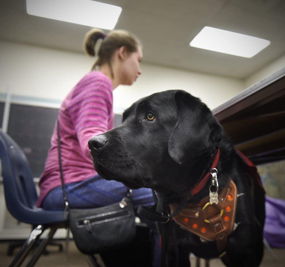Meg Schneider and her service dog Quest
