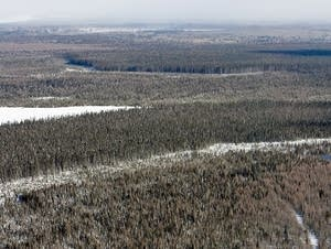 An aerial view of Voyageurs National Park in January 2013