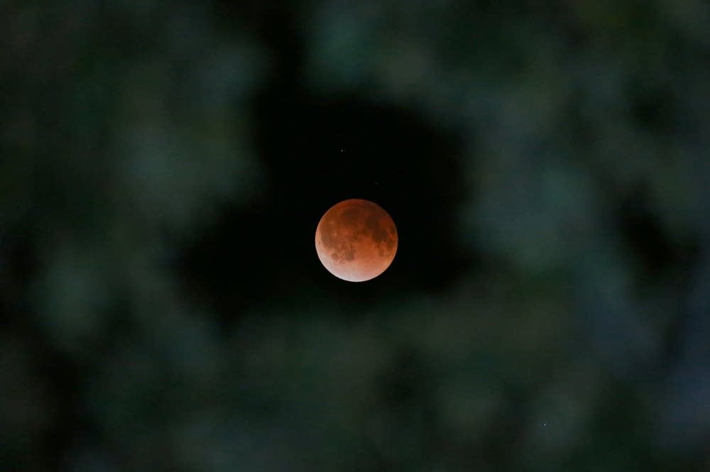 'Blood moon' over Texas