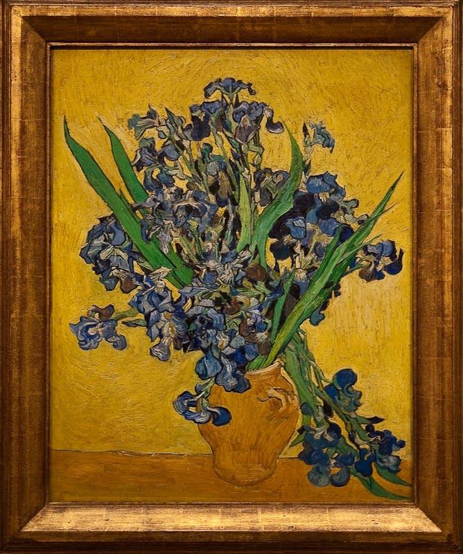 Vincent van Gogh's 'Irises' Saint-Remy-de-Provence