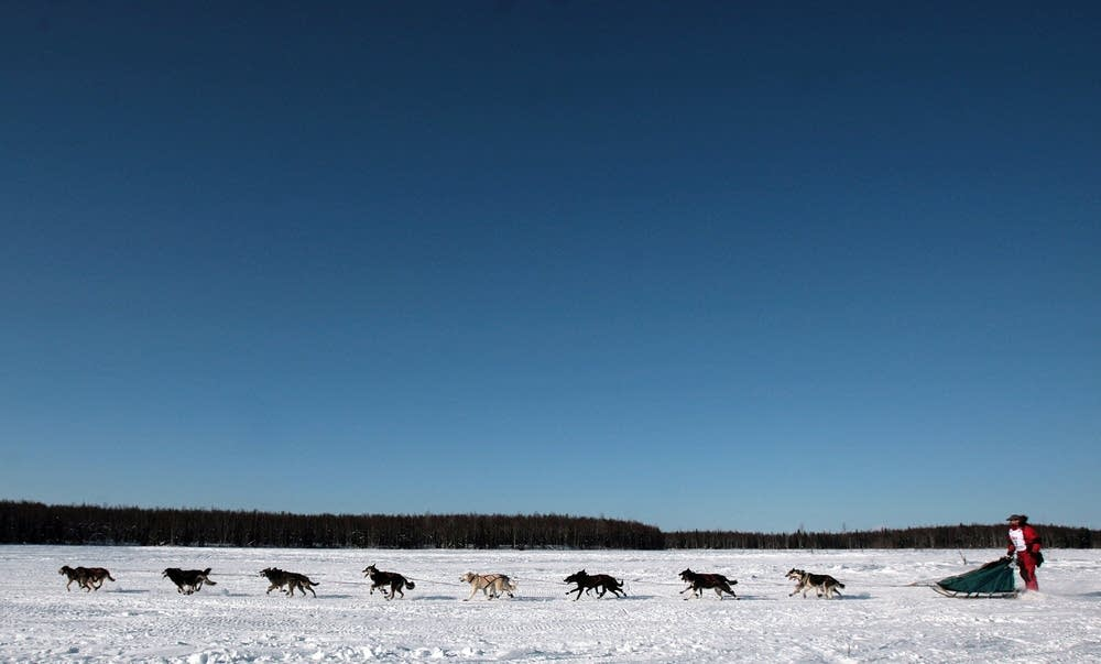 Iditarod 2007