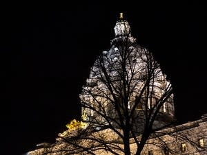 A tree stands in front of the State Capitol