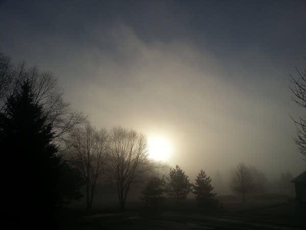 2-21-fog