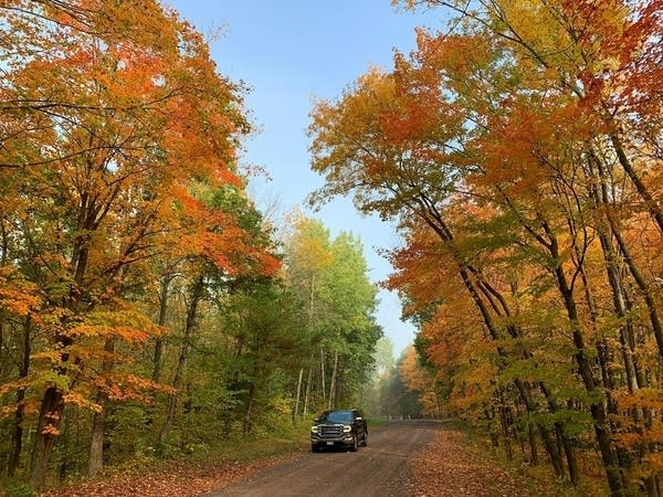 A car drives on a road surrounded by changing fall colors.