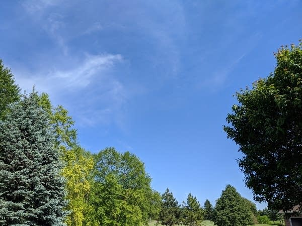 Blue sky at the Weather Lab