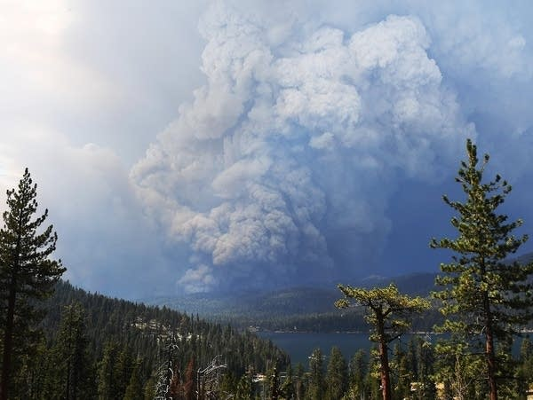 Plumes of smoke rise into the sky as a wildfire burns