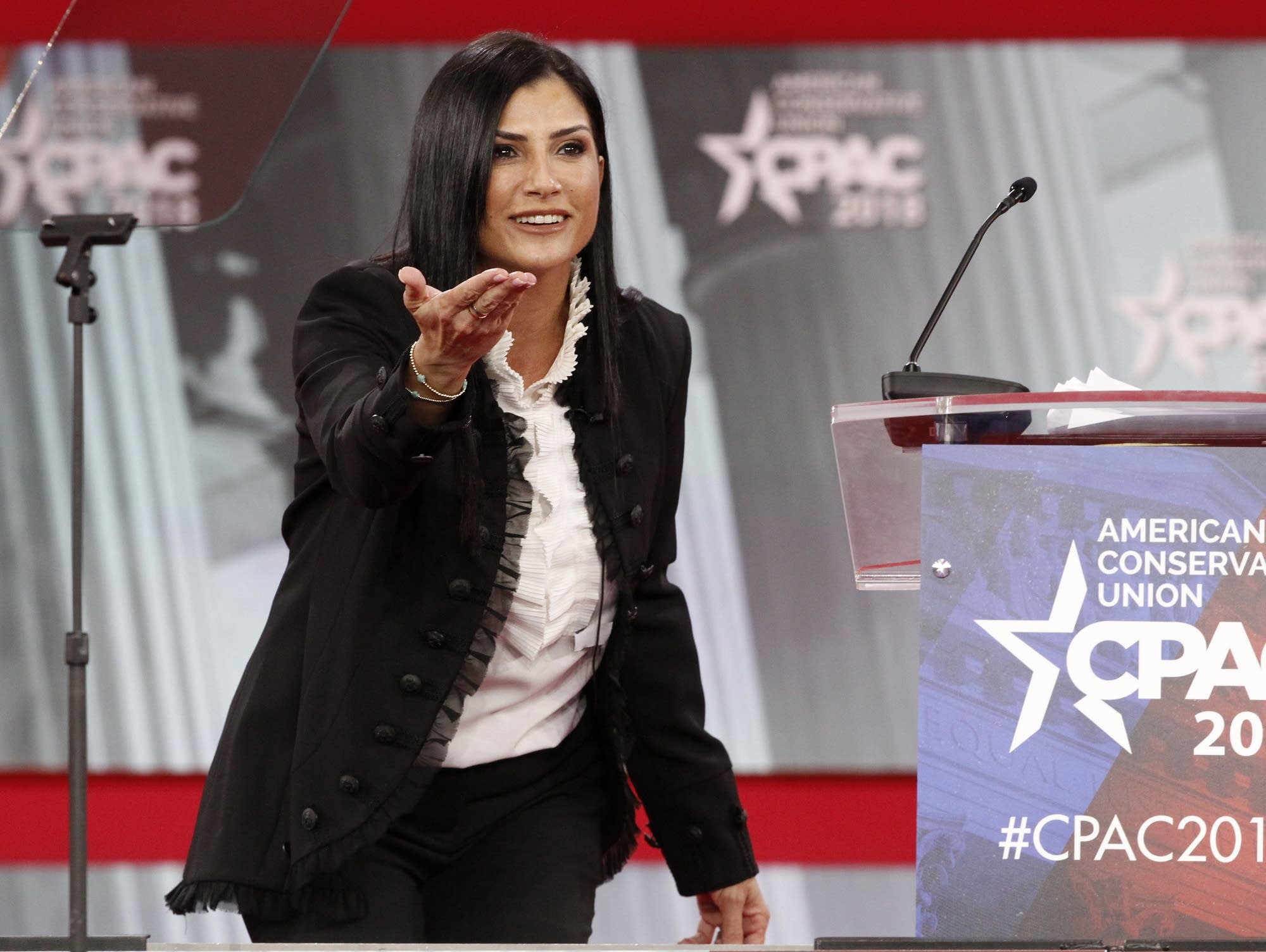 Who Is Dana Loesch? The Story Behind the Face of the NRA