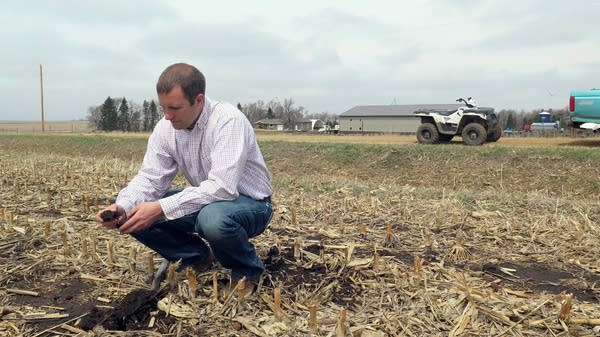 Brian Fruechte examines the soil on his southwest Minnesota farm.