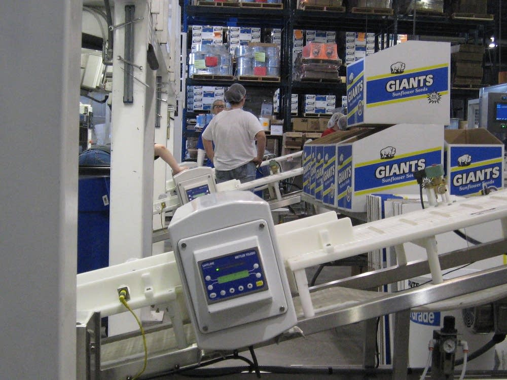 The packing line at Giant Sunflowers